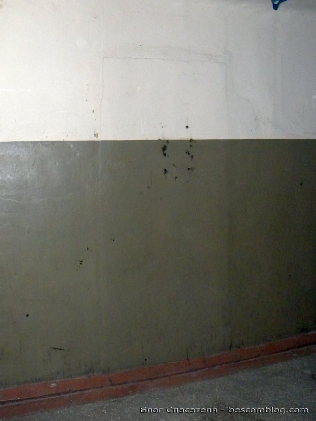 DSCN8703