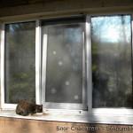 Затачиваем дом под кошаков — 004 — Балкон для кошек