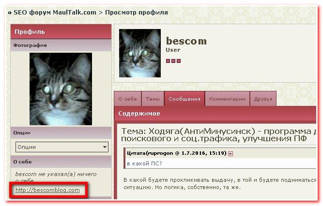 Прогон по форумным профилям