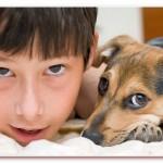 Отдающим животных в связи с рождением детей - ПОСВЯЩАЕТСЯ...